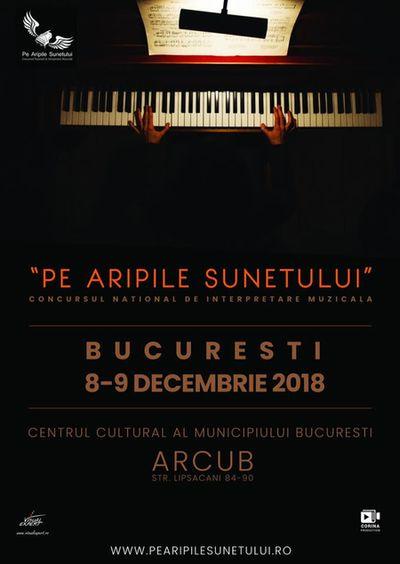 Pe Aripile Sunetului, concurs pentru muzicieni